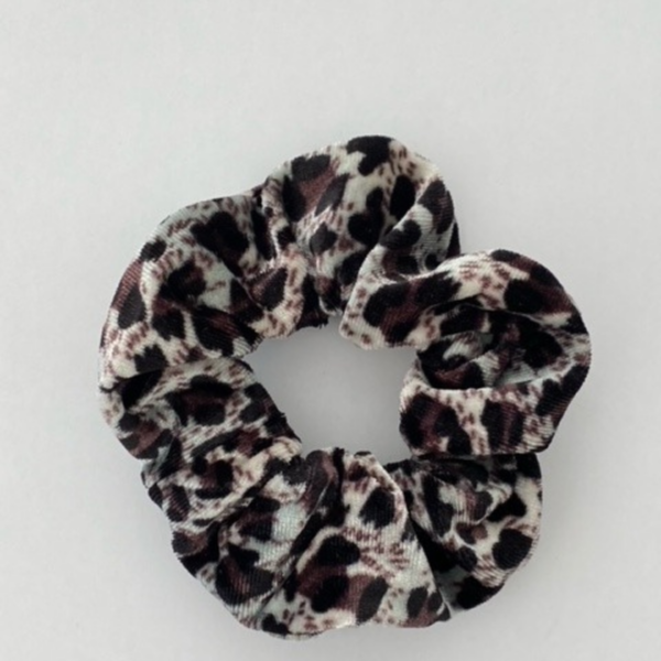Grijs leopard